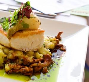 restaurant quality halibut dish